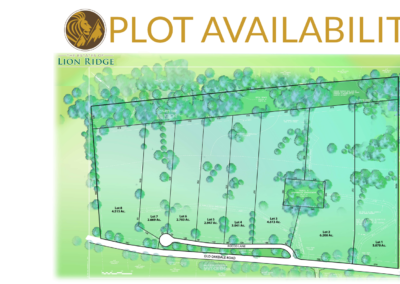Plot Availability - 8.31.18